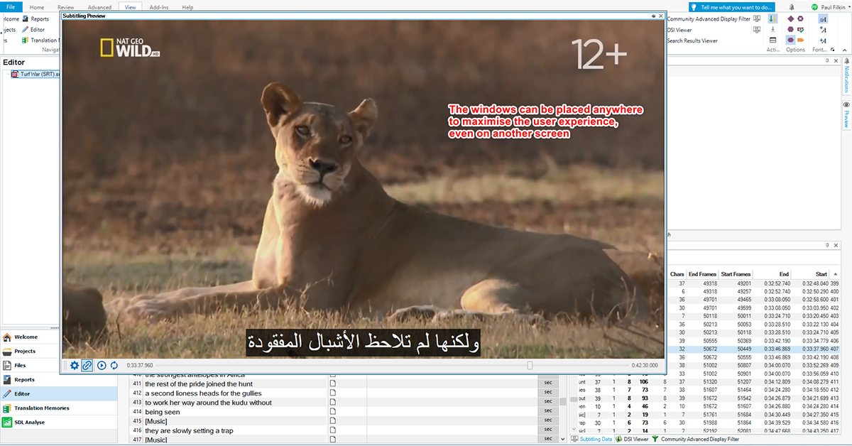 Real-time video preview showing translated subtitles